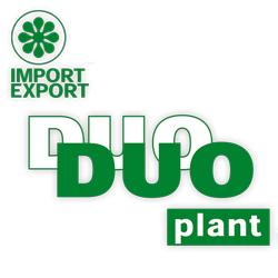 Duo Plant